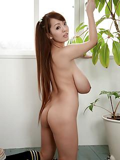 Free Big Tit Asians Porn