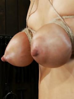 Free BDSM Tit Torture Porn